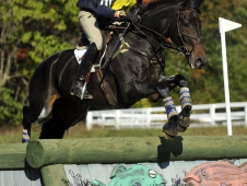 Boyd Martin and Cold Harbor