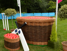 Fence 23: The Cricket Ball Basket