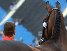 William Fox-Pitt and Lionheart