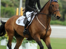 Johnathon Corrigan and Olympic de Chamant
