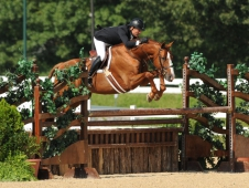 Garfield and Scott Stewart take the lead at USHJA Derby Championships.
