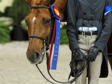 Large Pony Hunter Champion