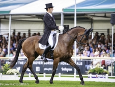 NZL-Sir Mark Todd rides Leonidas II during the Second Day of Dressage. Interim-1st. 2017 GBR-Land Rover Burghley Horse Trials. Friday 1 September. Copyright: Libby Law Photography