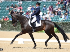 18KyLittleDressage-1