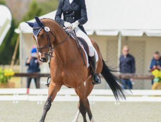 2019 Carolina International - Dressage