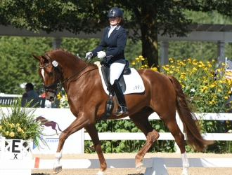 2019 Festival of Champions Young Horse- Saturday