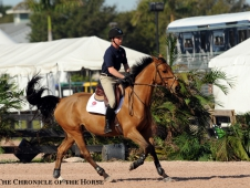 Lengthening the canter