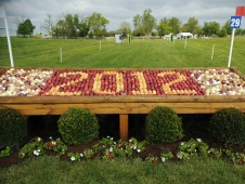 Fence 29: The Kentucky Proud Produce Stand