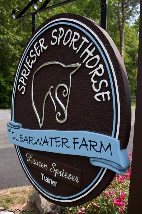Sprieser-Sporthorse_6.jpg