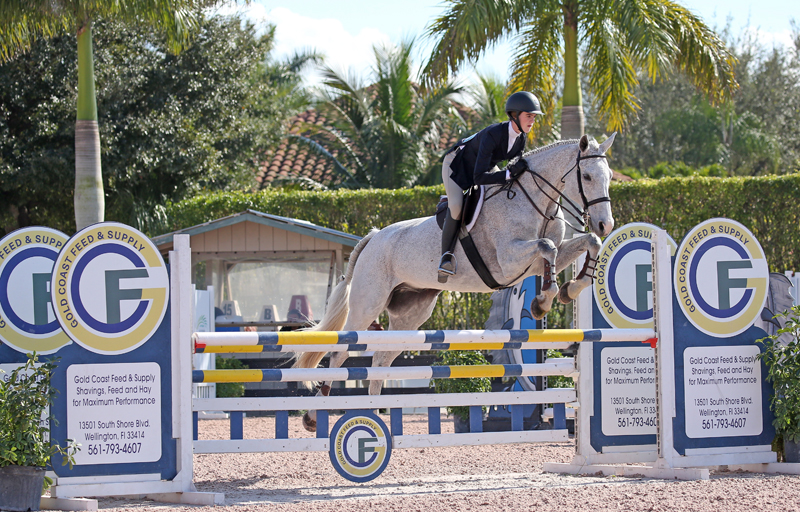 01/02/2017 ; Wellington FL ; Winter Equestrian Festival - Week 4