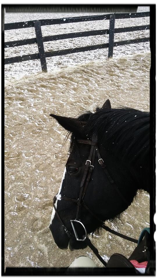 Jitter snow