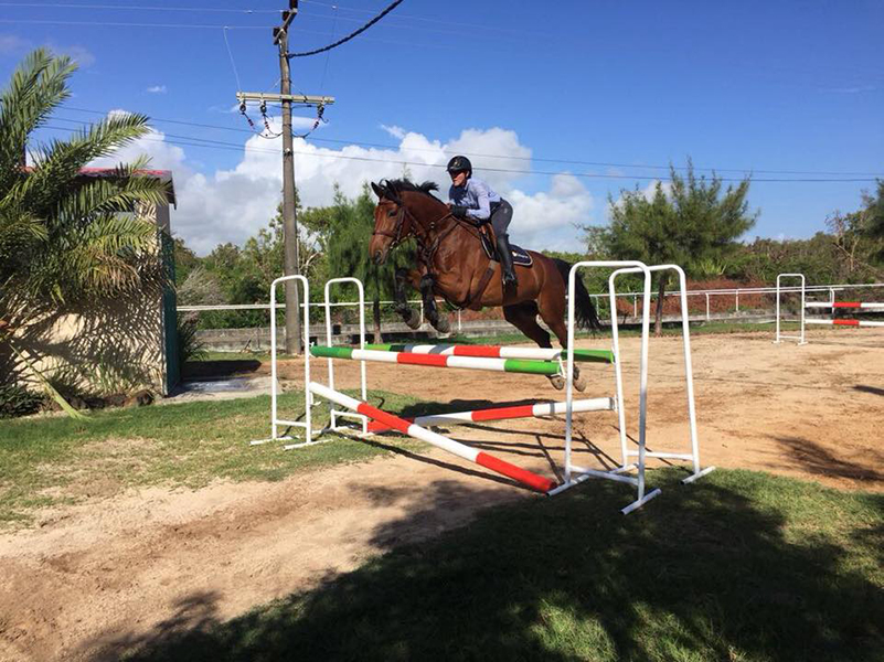 The quarantine in Mauritius had no jumping arena, so Lisa would school Campbell over fences on the driveway. Photo supplied by Lisa Williams