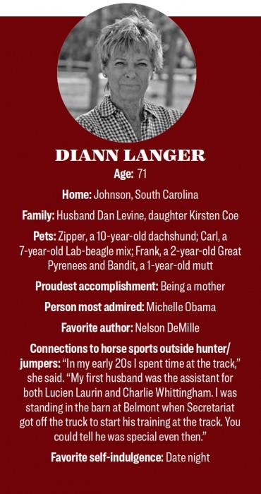 DiAnnLangerSidebar