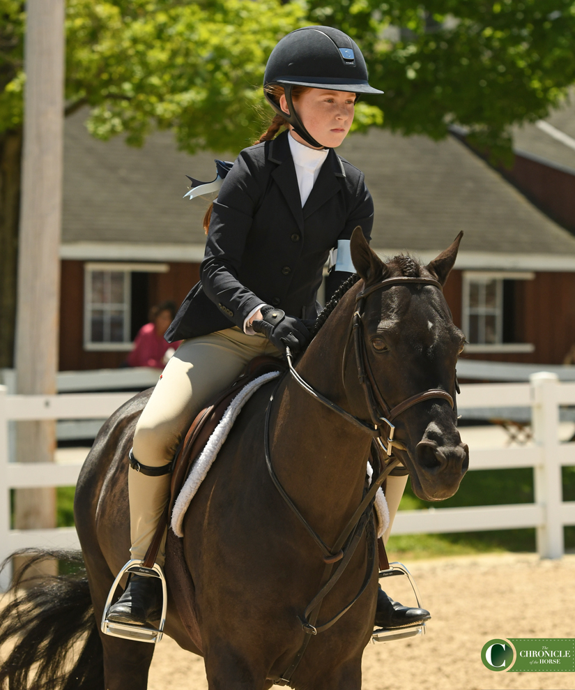 WEB 2 medium pony Anisette HANNAH FAMULAK DHS_1817