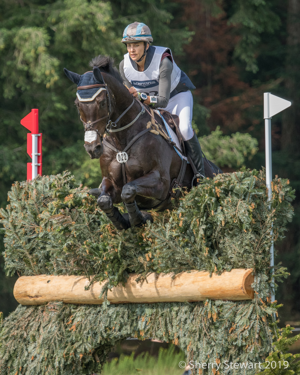 1Luhmuhlen 2019 Frankie Thieriot Stutes & Chatwin-4651-2