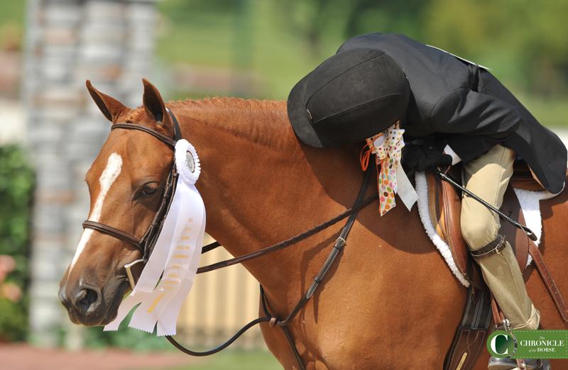 web pony DSC_9458