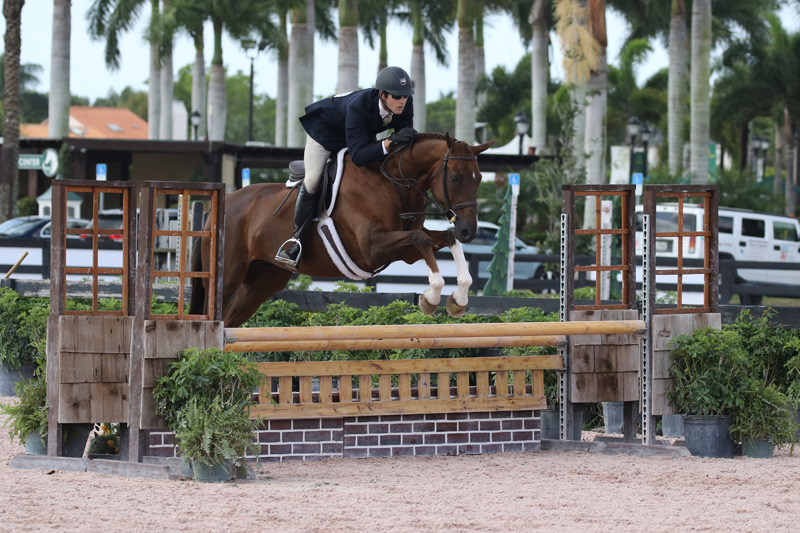 13/03/2019 ; Wellington FL ; Winter Equestrian Festival - Week 10