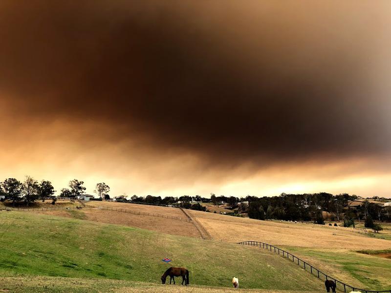 Fires Dec 19
