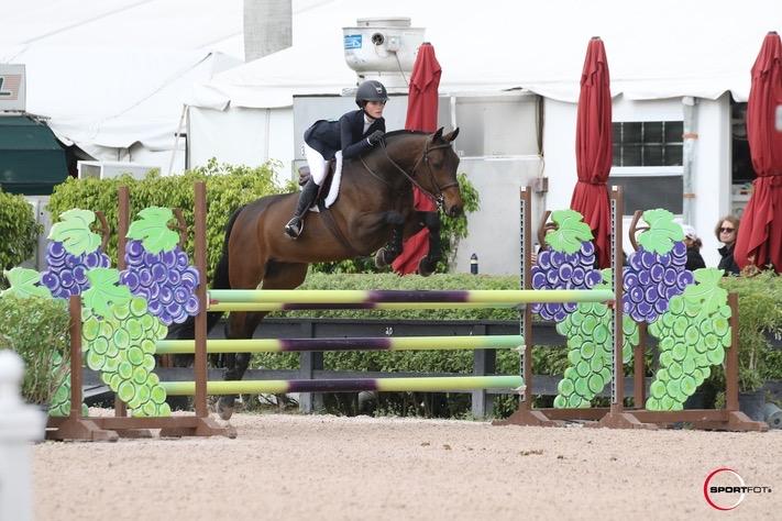 04/03/2020 ; Wellington FL ; Winter Equestrian Festival - Week 9