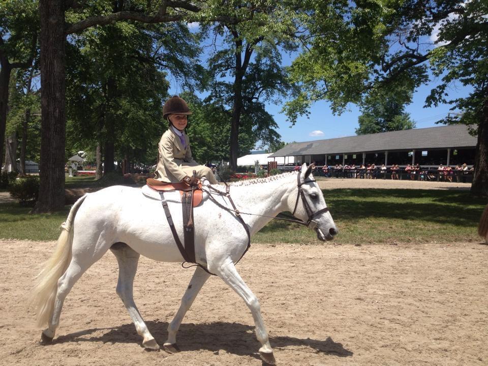 josie side-saddle