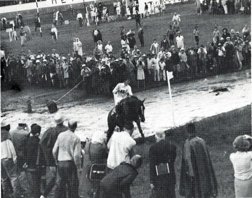 1968 Olympics592