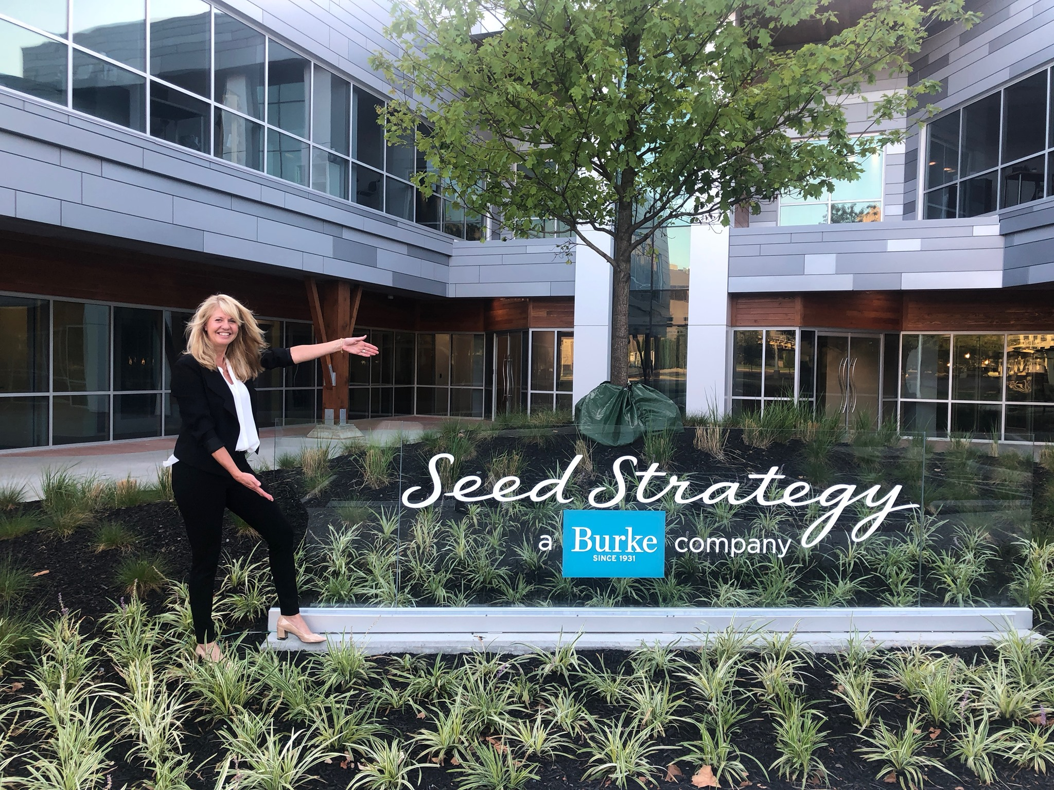 Seed Strategy New Office