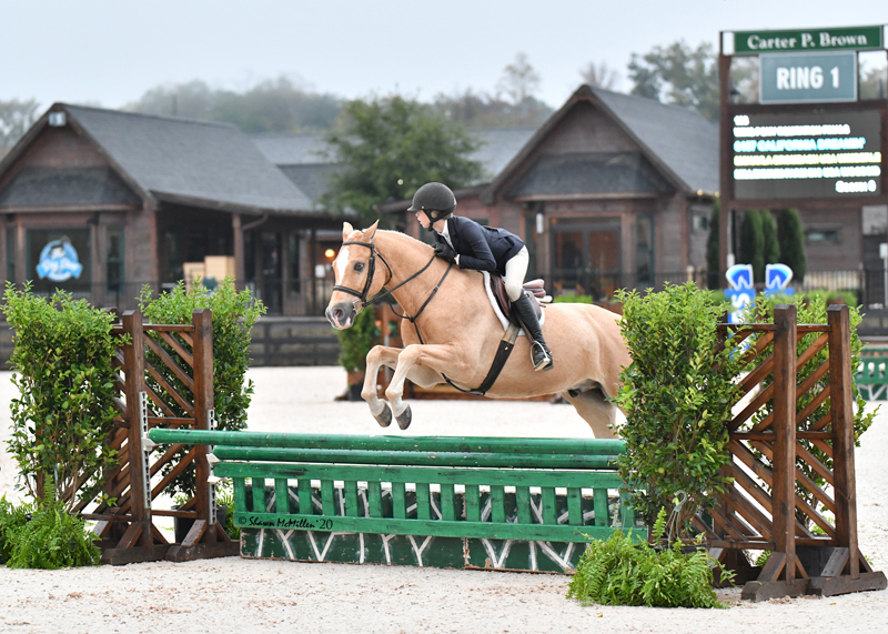 McKayla Brombach and California Dreamin by Shawn McMillen Photography DSC_0049