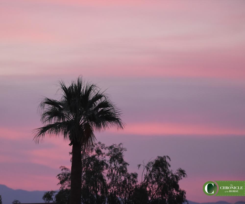 SunsetLMB_4273
