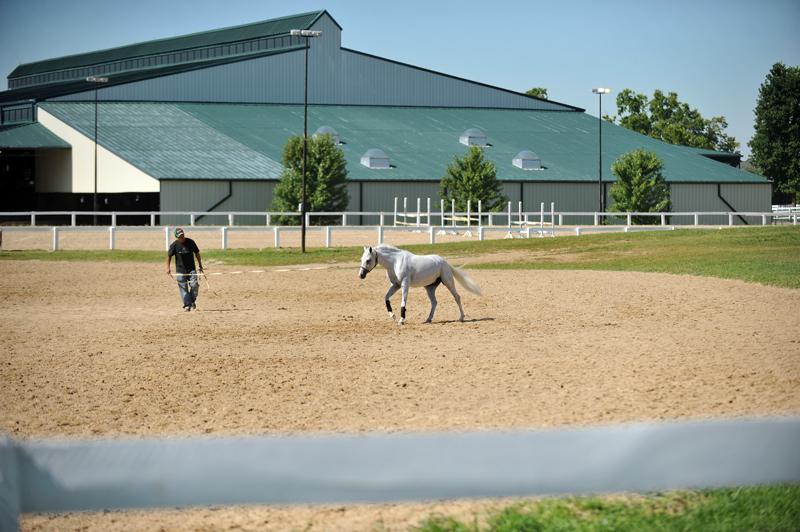2011 USEF Pony Finals