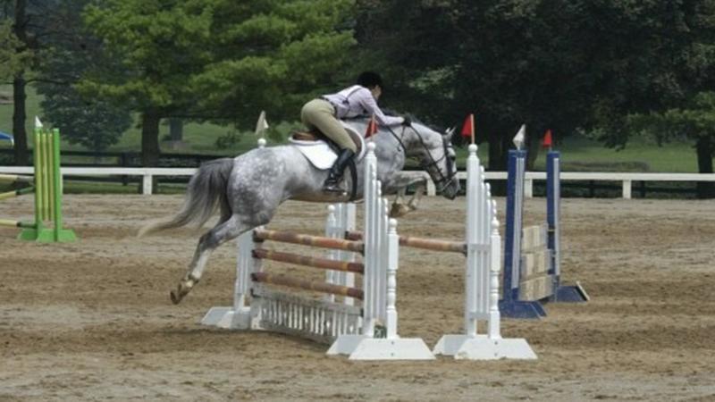 LJ_Pony_Club_Nationals