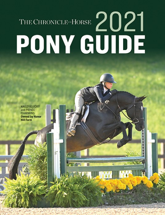 Pony Guide Cover
