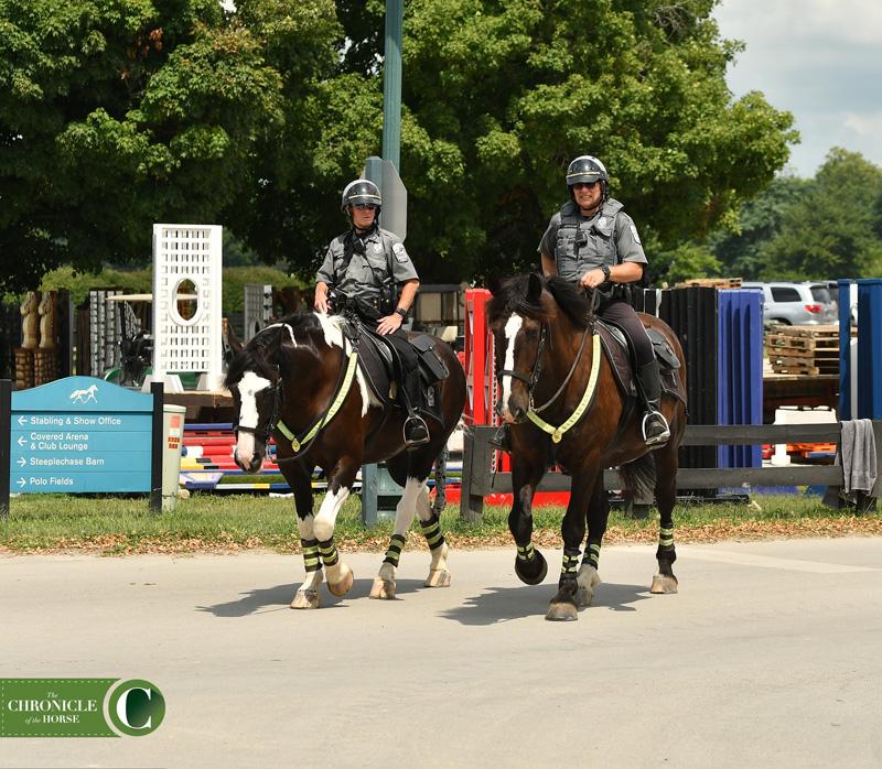 police horses PFI_0895